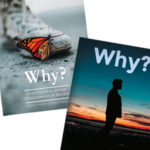 Why? DVD Set (Men and Women)